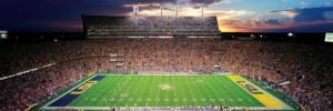 LSU Tigers Stadium