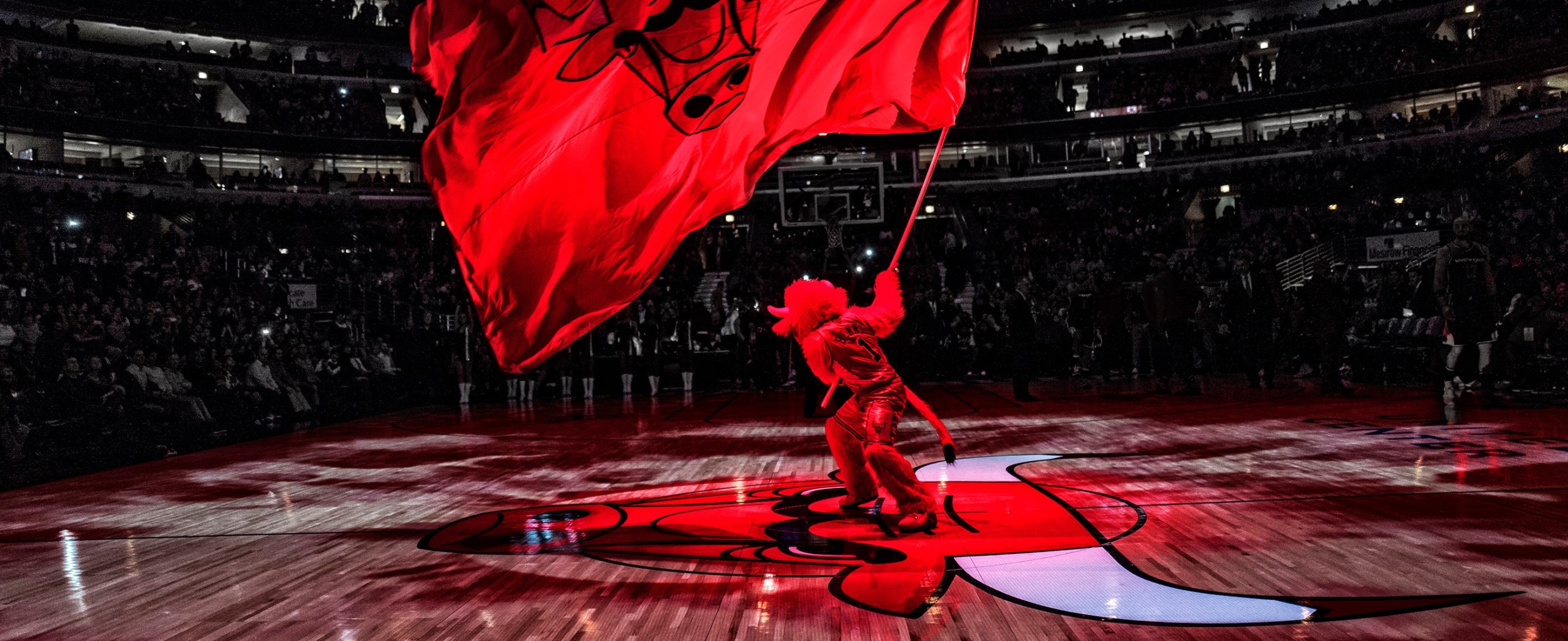 Chicago Bulls Benny The Bull on Game Day
